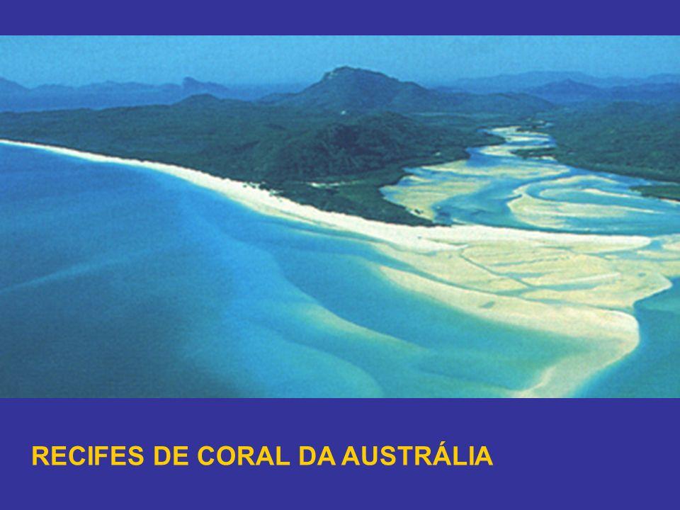 RECIFES DE CORAL DA AUSTRÁLIA
