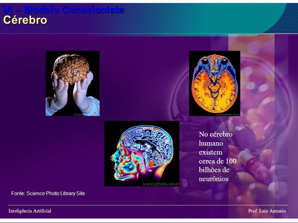 IA – Modelo Conexionista Cérebro