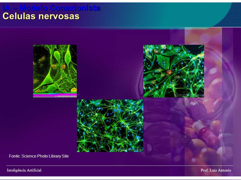 IA – Modelo Conexionista Celulas nervosas