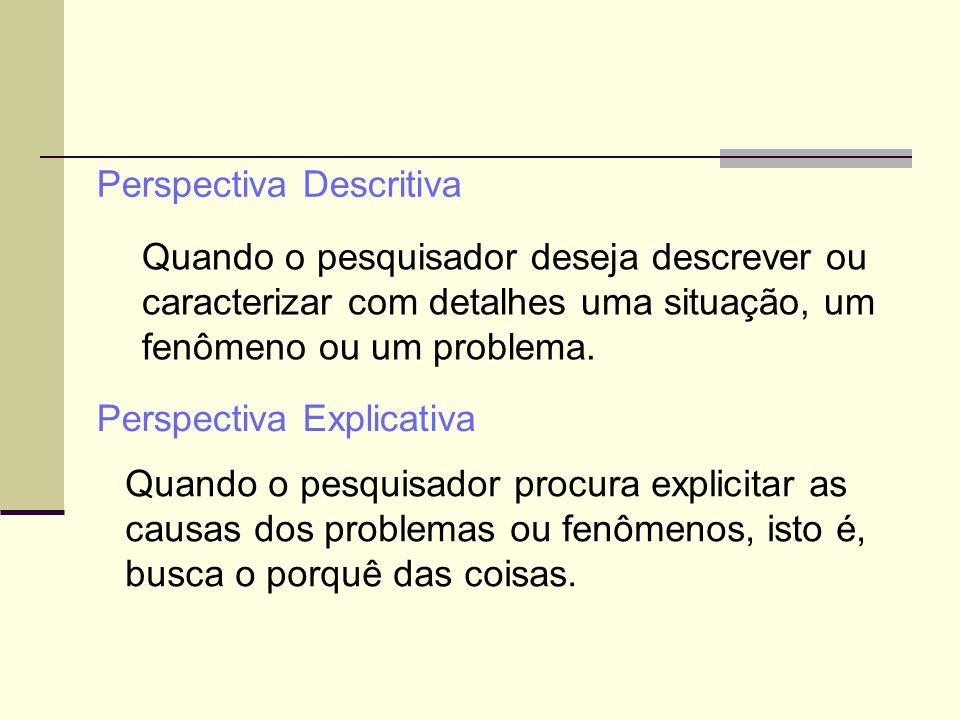 Perspectiva Descritiva