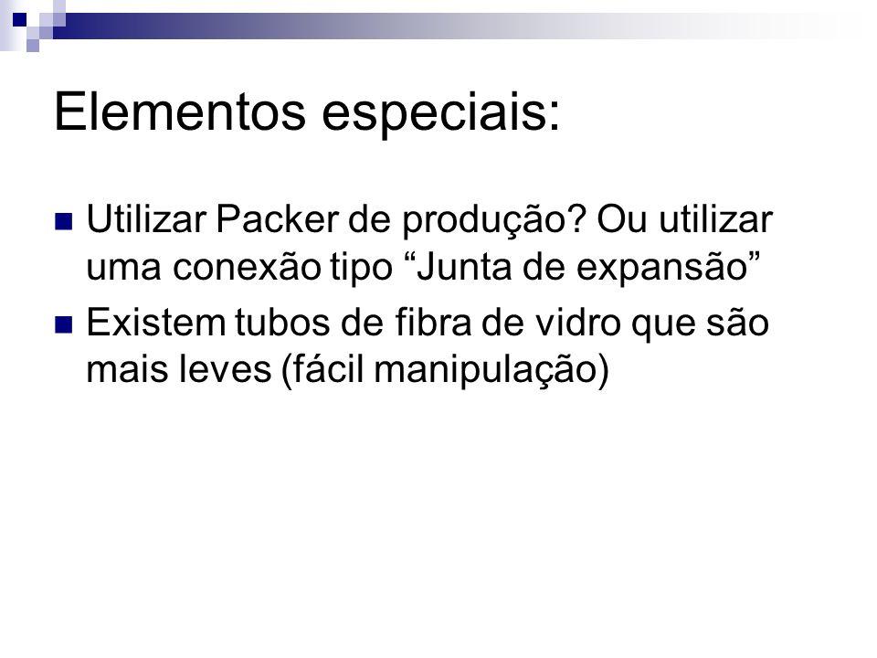 Elementos especiais: Utilizar Packer de produção Ou utilizar uma conexão tipo Junta de expansão