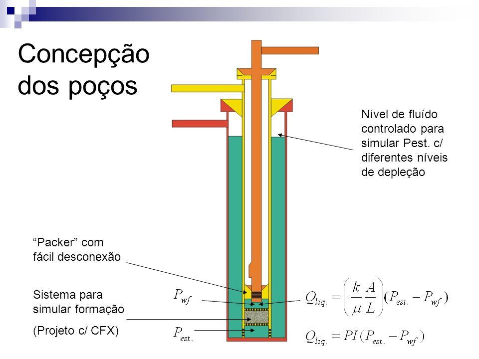 Concepção dos poços Nível de fluído controlado para simular Pest. c/ diferentes níveis de depleção.