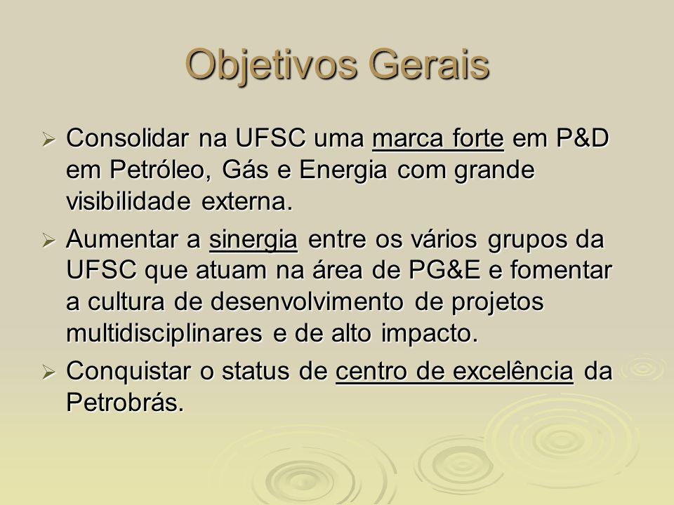 Objetivos GeraisConsolidar na UFSC uma marca forte em P&D em Petróleo, Gás e Energia com grande visibilidade externa.