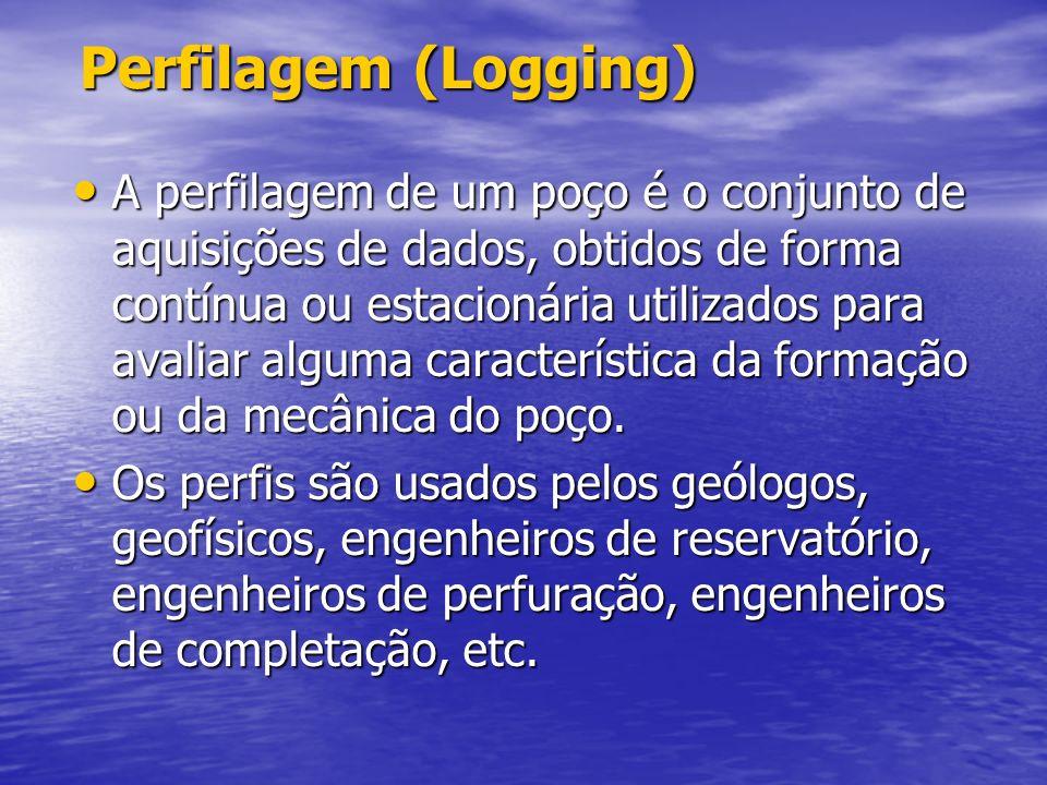 Perfilagem (Logging)