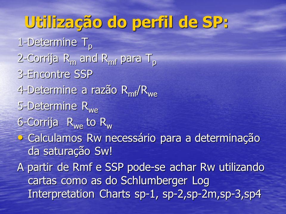 Utilização do perfil de SP: