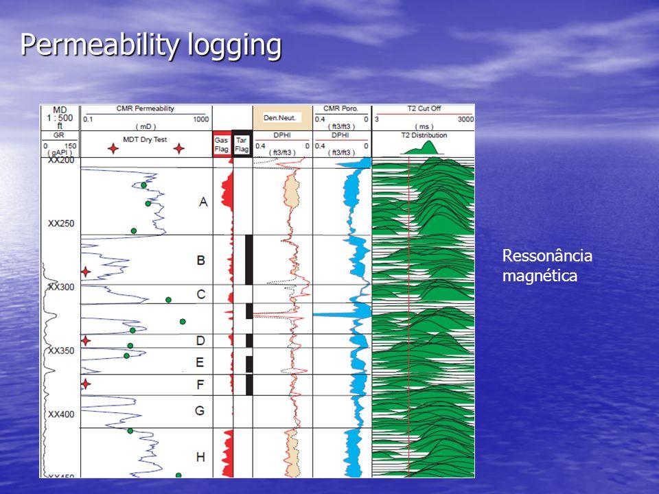 Permeability logging Ressonância magnética