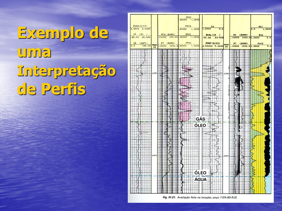Exemplo de uma Interpretação de Perfis