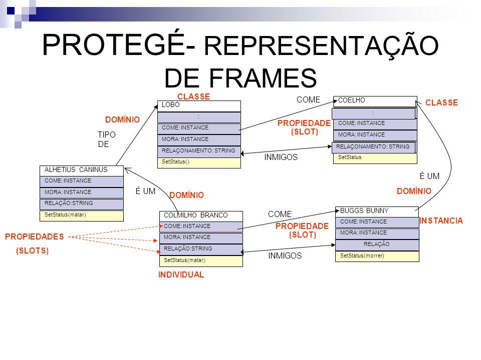 PROTEGÉ- REPRESENTAÇÃO DE FRAMES