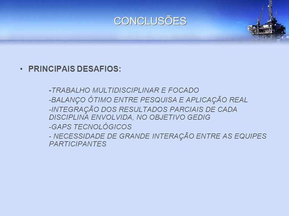 CONCLUSÕES PRINCIPAIS DESAFIOS: -TRABALHO MULTIDISCIPLINAR E FOCADO