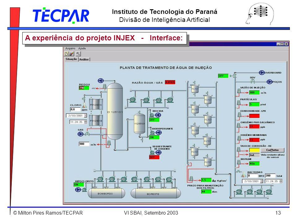 A experiência do projeto INJEX - Interface: