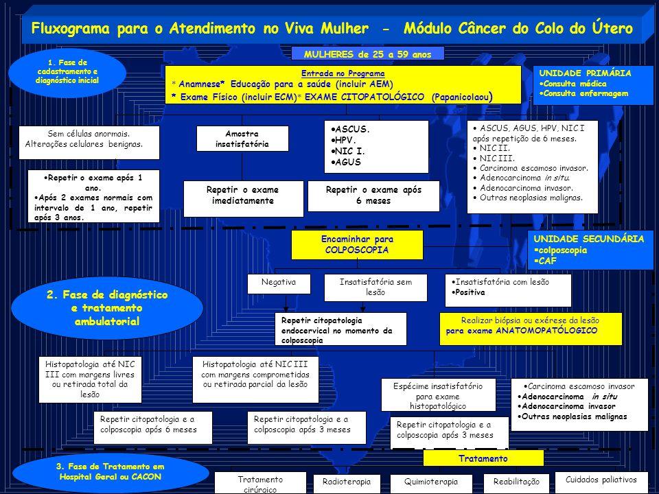 Fluxograma para o Atendimento no Viva Mulher - Módulo Câncer do Colo do Útero