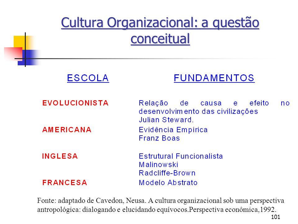 Cultura Organizacional: a questão conceitual