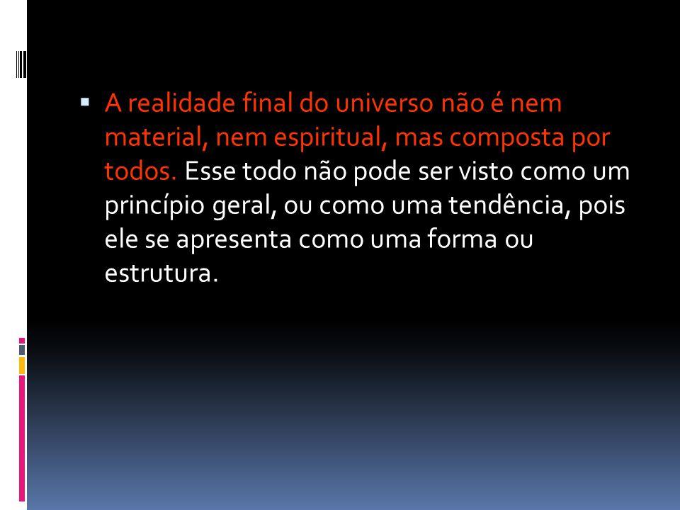 A realidade final do universo não é nem material, nem espiritual, mas composta por todos.