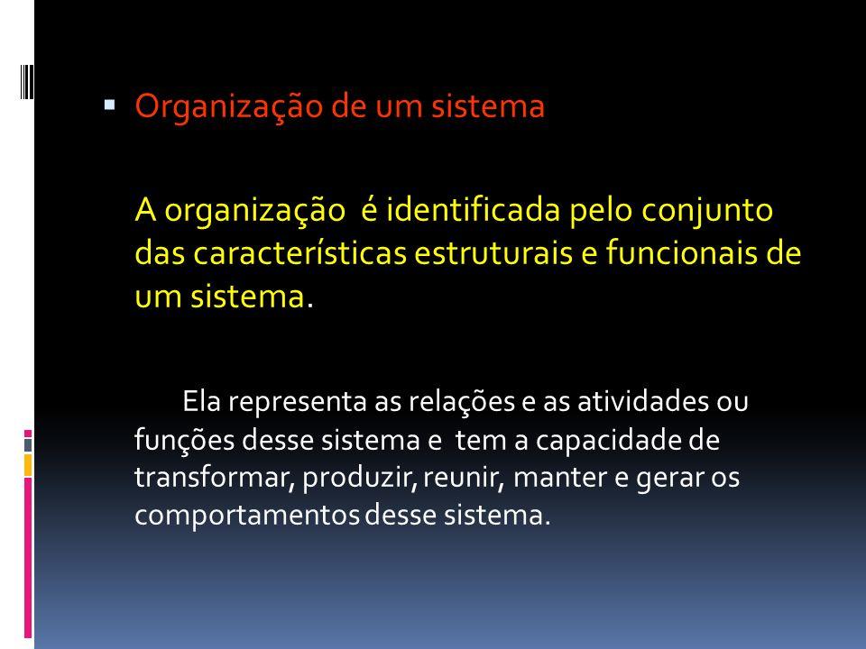 Organização de um sistema