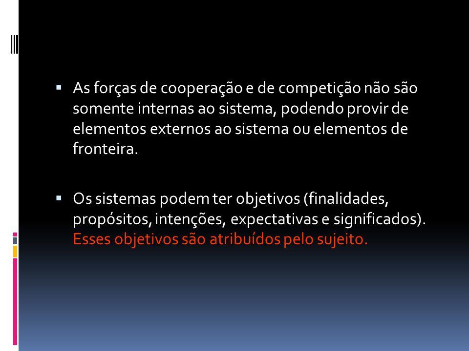 As forças de cooperação e de competição não são somente internas ao sistema, podendo provir de elementos externos ao sistema ou elementos de fronteira.