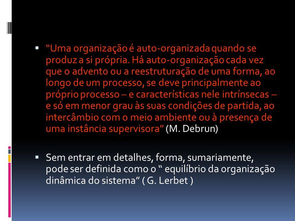 Uma organização é auto-organizada quando se produz a si própria
