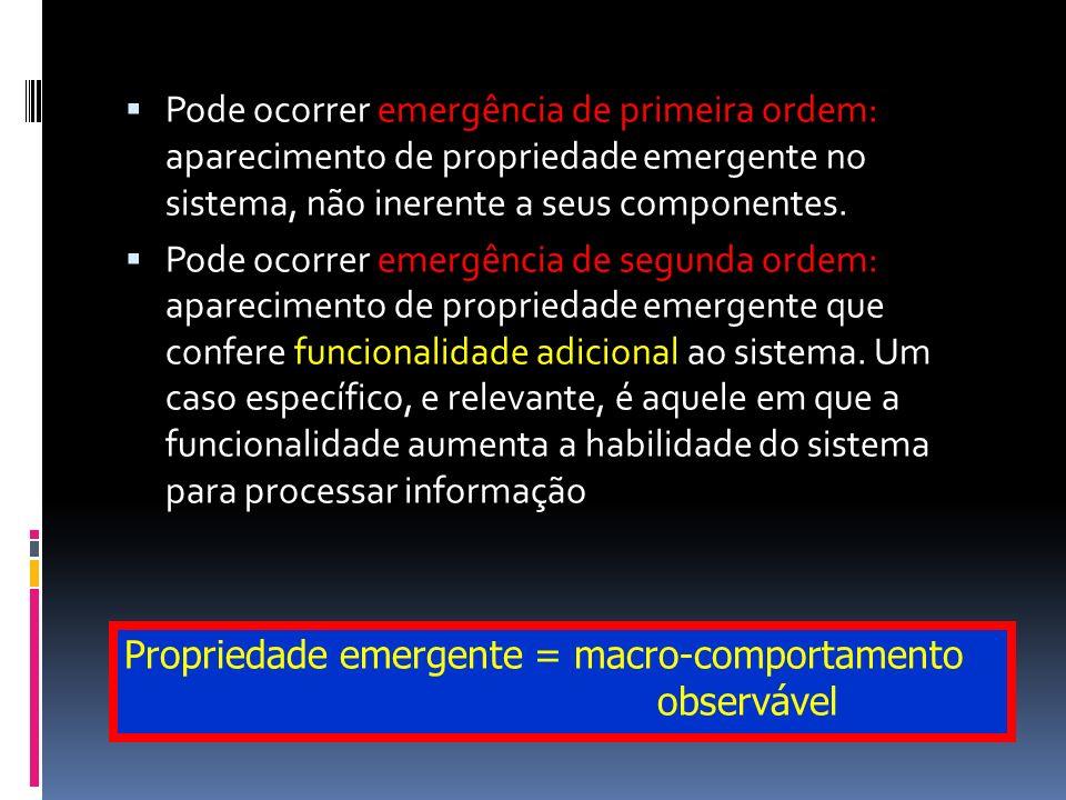 Pode ocorrer emergência de primeira ordem: aparecimento de propriedade emergente no sistema, não inerente a seus componentes.