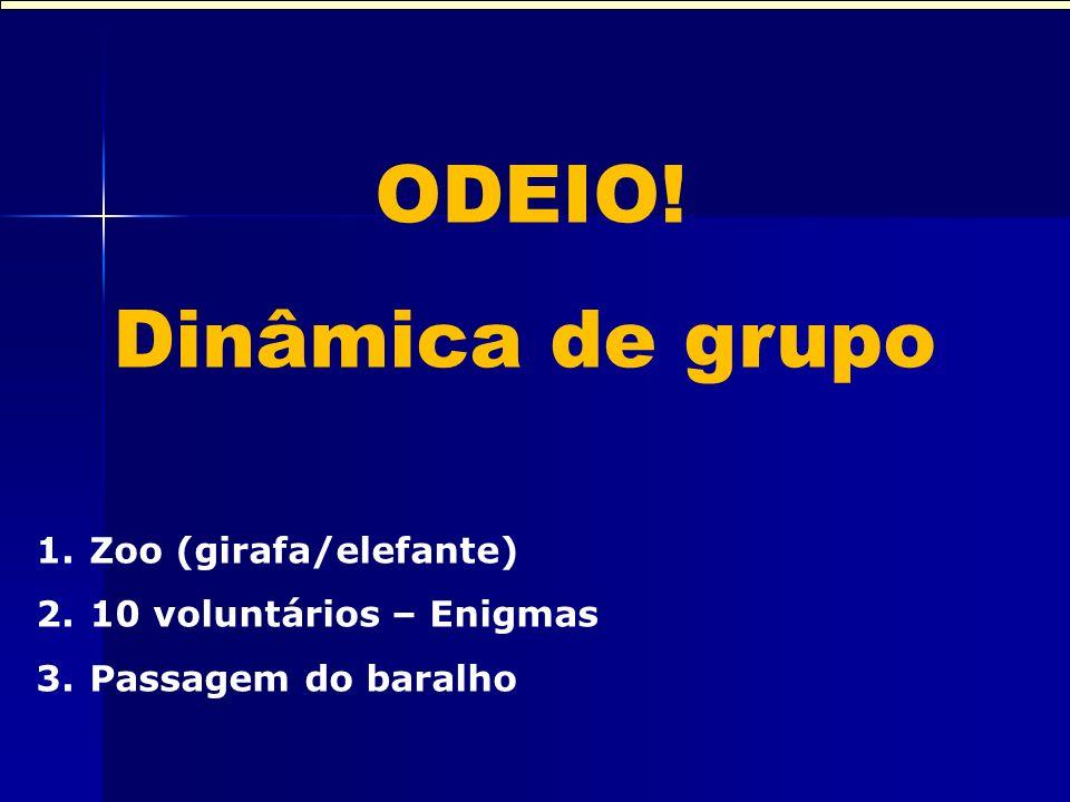 Dinâmica de grupo Dinâmica de grupo ODEIO! Zoo (girafa/elefante)
