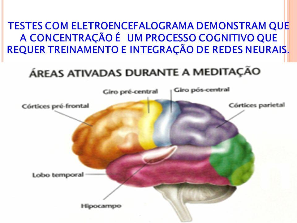 TESTES COM ELETROENCEFALOGRAMA DEMONSTRAM QUE A CONCENTRAÇÃO É UM PROCESSO COGNITIVO QUE REQUER TREINAMENTO E INTEGRAÇÃO DE REDES NEURAIS.