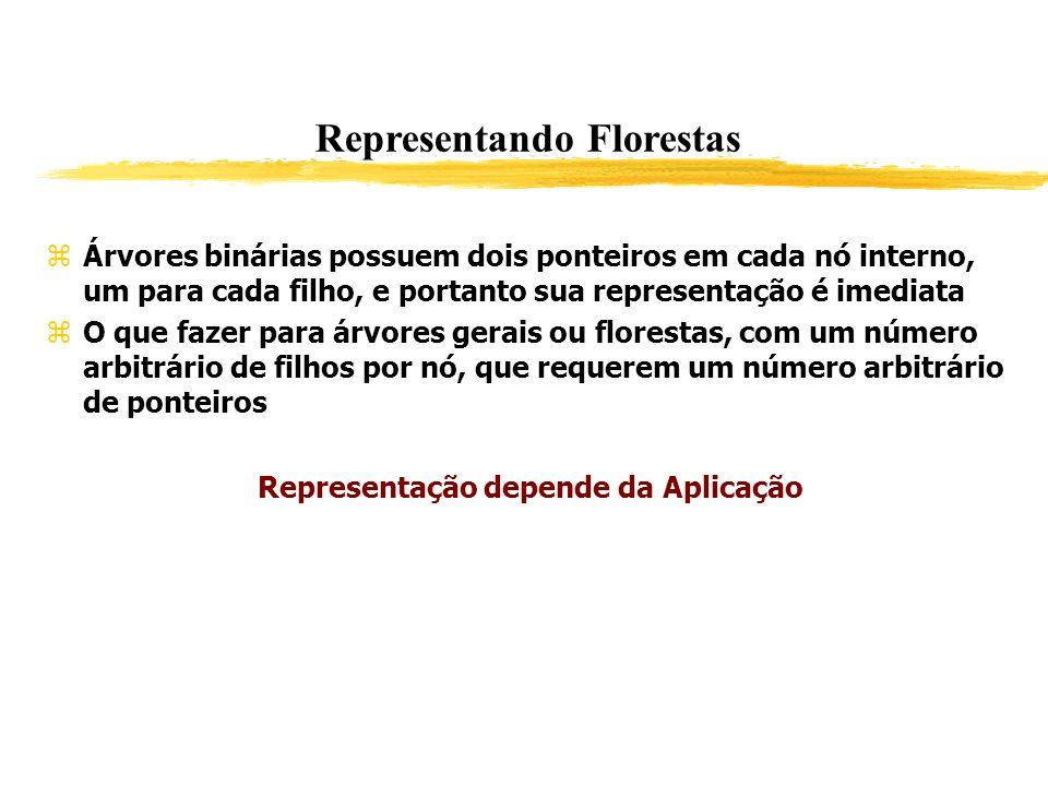Representando Florestas Representação depende da Aplicação
