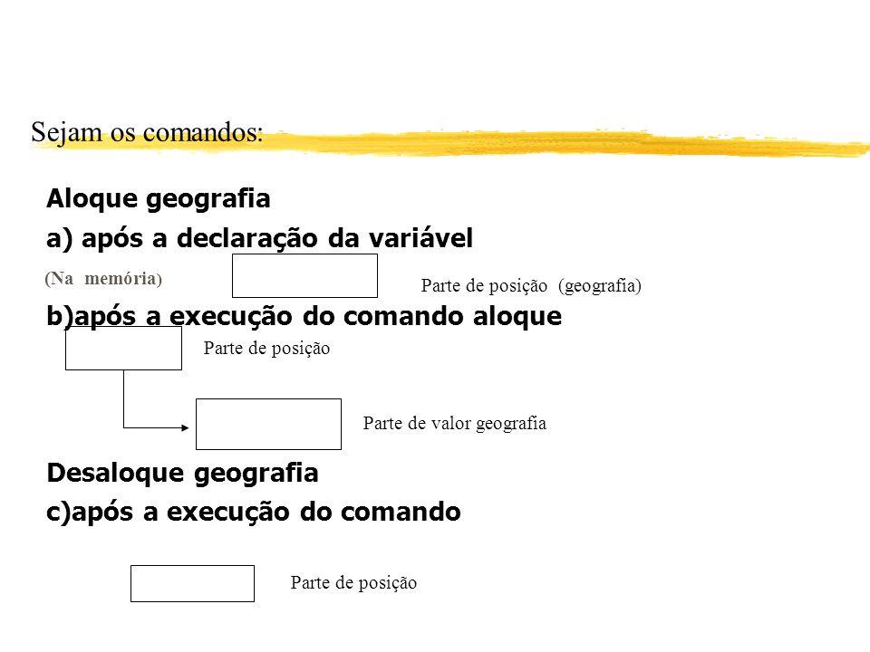 Sejam os comandos: Aloque geografia a) após a declaração da variável