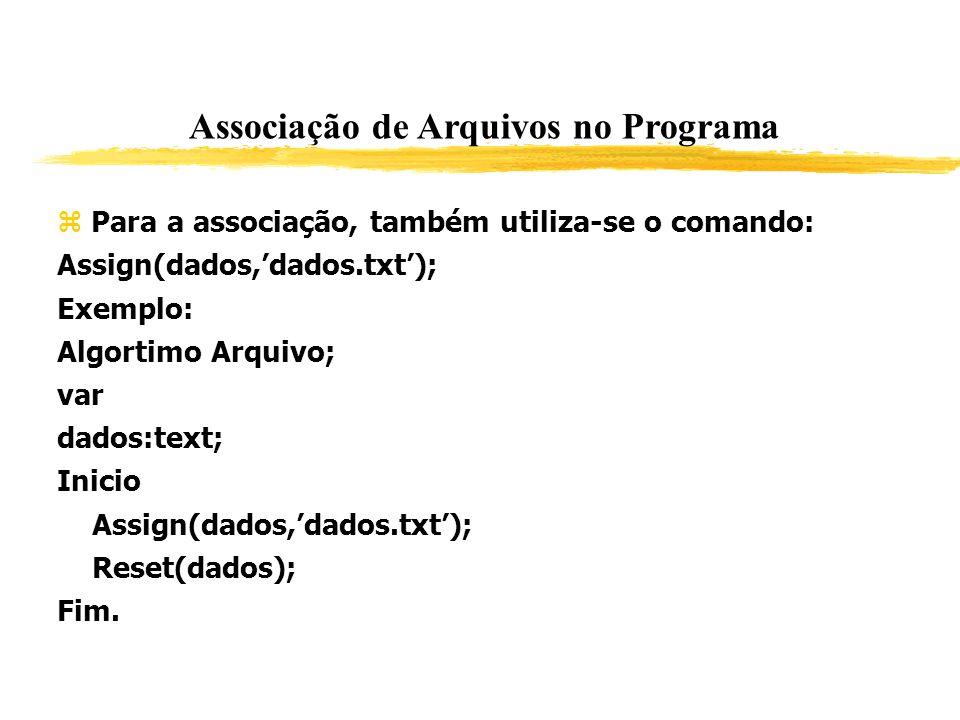 Associação de Arquivos no Programa