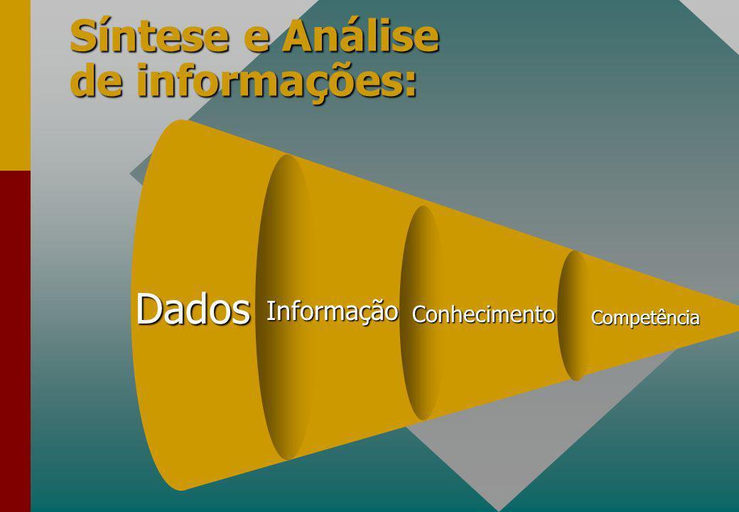 Síntese e Análise de informações: