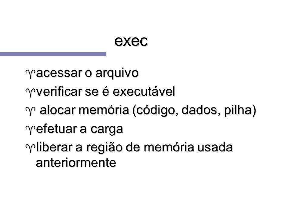 exec acessar o arquivo verificar se é executável