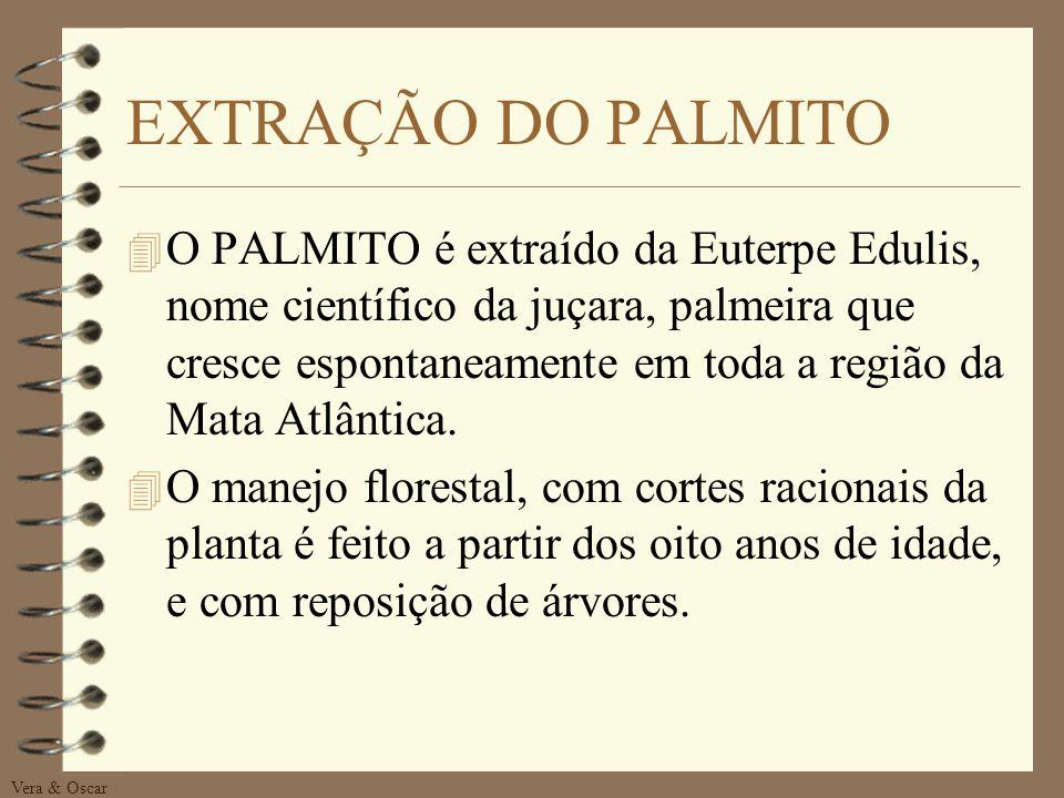 EXTRAÇÃO DO PALMITO