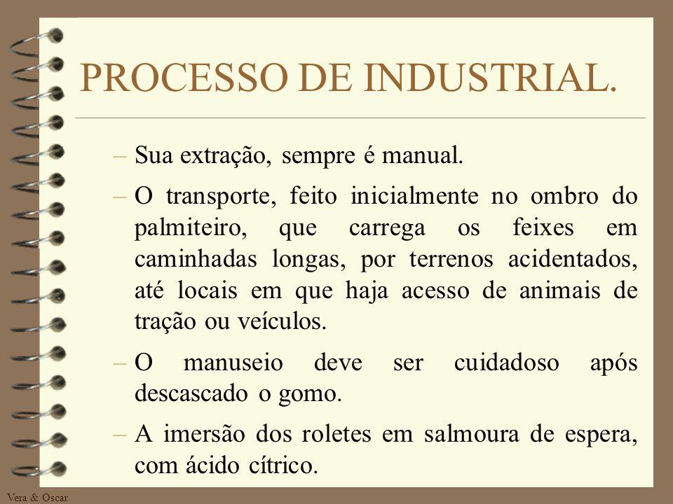 PROCESSO DE INDUSTRIAL.