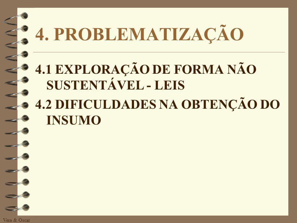 4. PROBLEMATIZAÇÃO 4.1 EXPLORAÇÃO DE FORMA NÃO SUSTENTÁVEL - LEIS