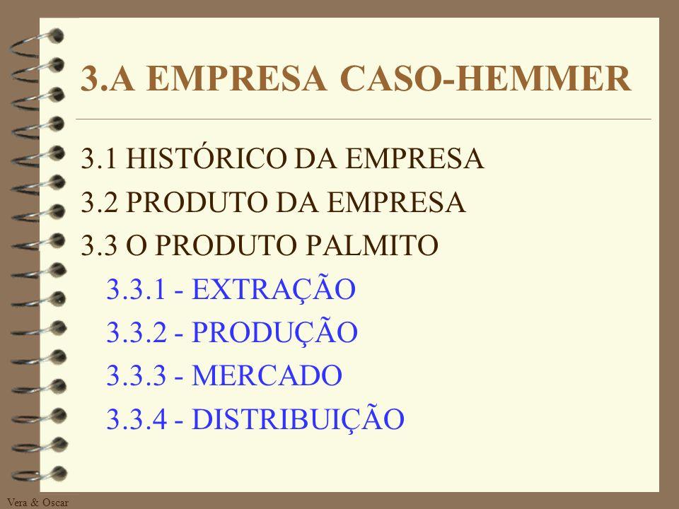 3.A EMPRESA CASO-HEMMER 3.1 HISTÓRICO DA EMPRESA