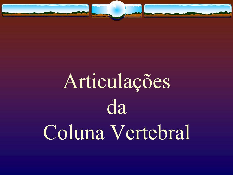 Articulações da Coluna Vertebral