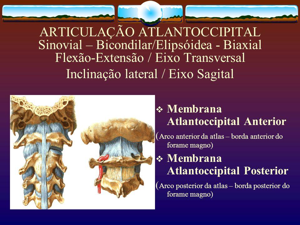 ARTICULAÇÃO ATLANTOCCIPITAL Sinovial – Bicondilar/Elipsóidea - Biaxial Flexão-Extensão / Eixo Transversal Inclinação lateral / Eixo Sagital