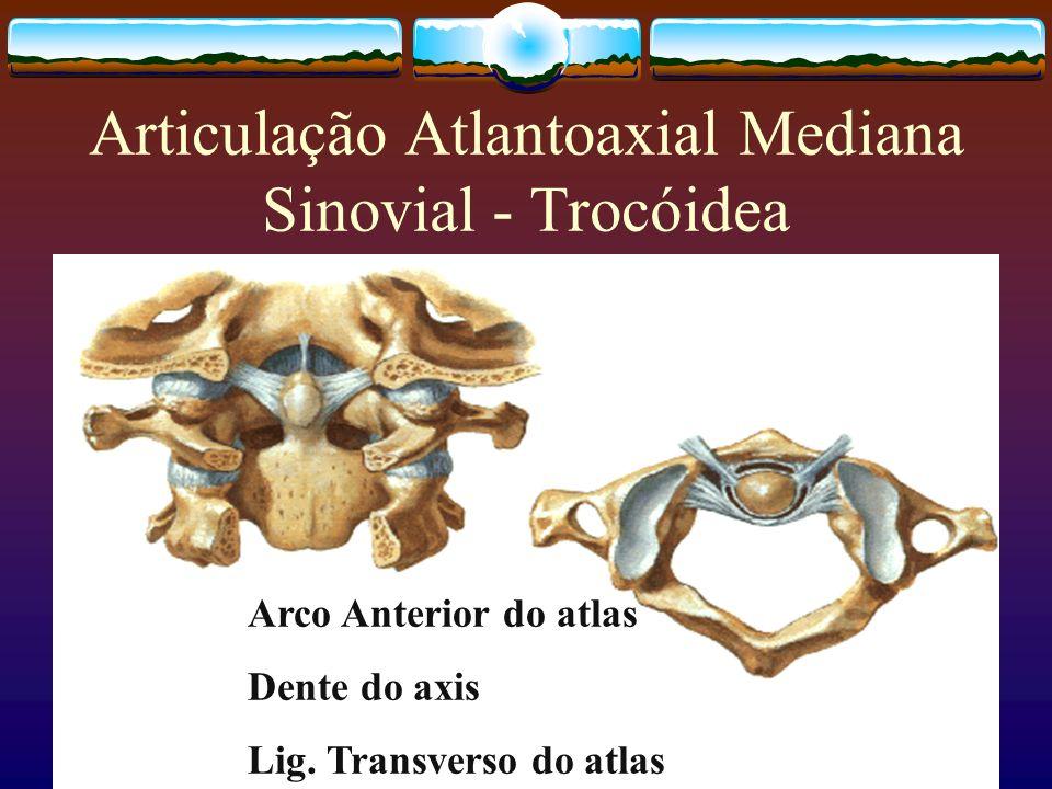 Articulação Atlantoaxial Mediana Sinovial - Trocóidea