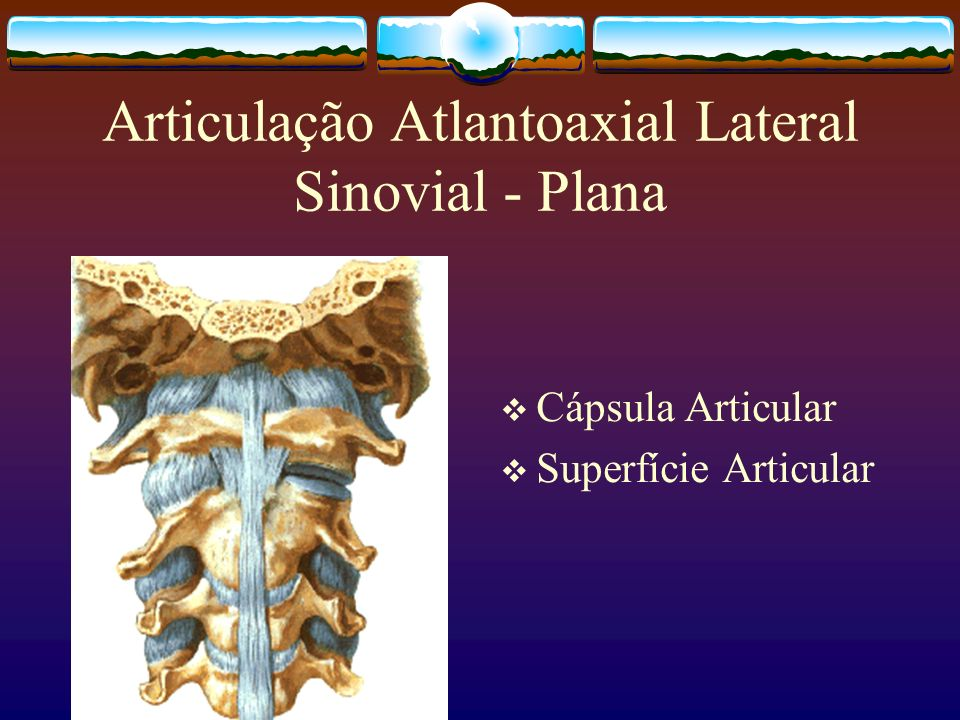 Articulação Atlantoaxial Lateral Sinovial - Plana