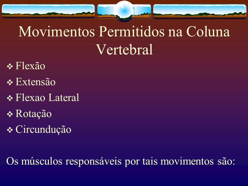 Movimentos Permitidos na Coluna Vertebral