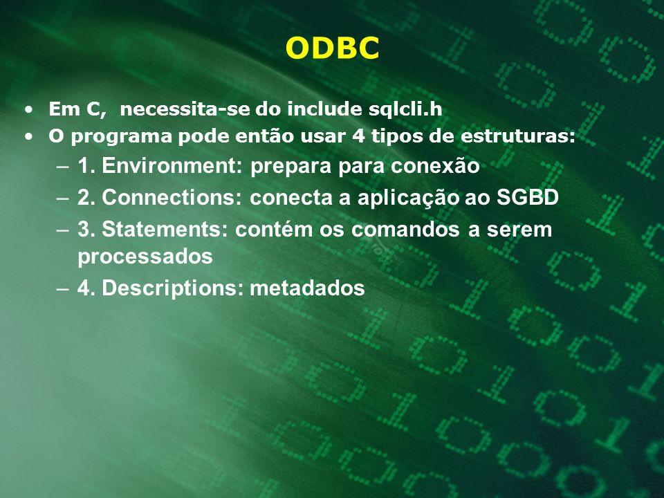 ODBC 1. Environment: prepara para conexão