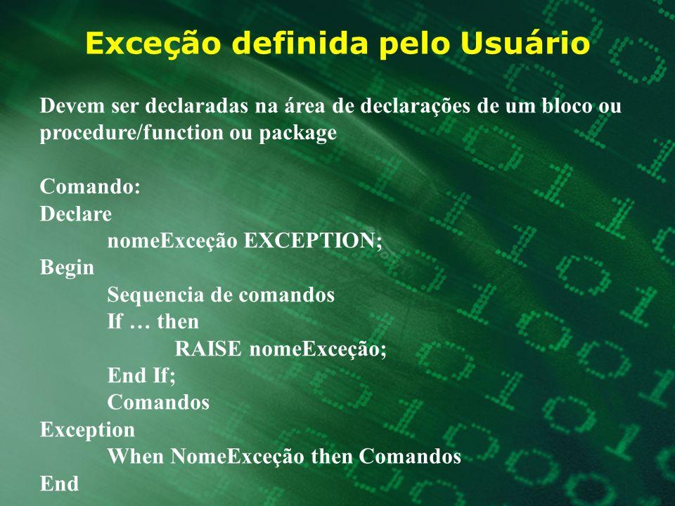 Exceção definida pelo Usuário