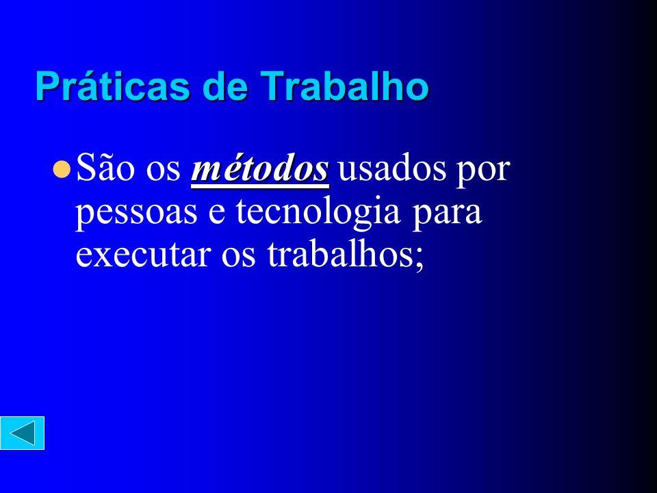 Práticas de Trabalho São os métodos usados por pessoas e tecnologia para executar os trabalhos;