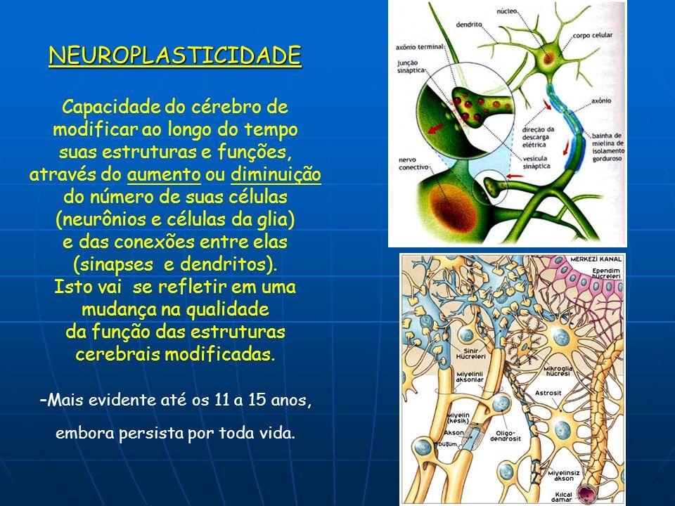 NEUROPLASTICIDADE Capacidade do cérebro de modificar ao longo do tempo