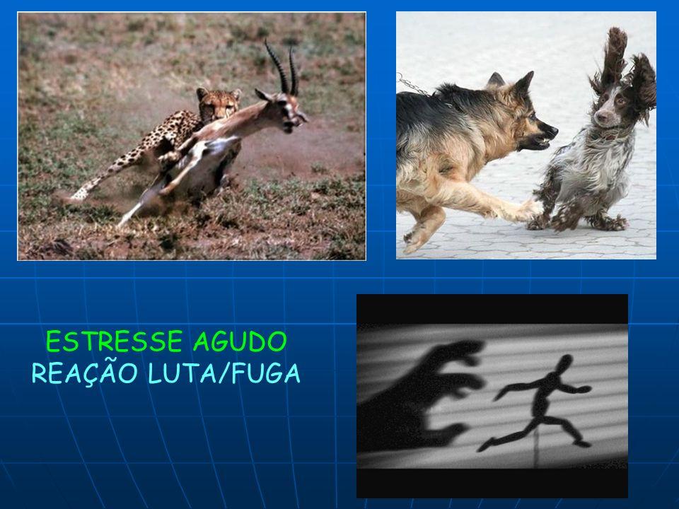ESTRESSE AGUDO REAÇÃO LUTA/FUGA