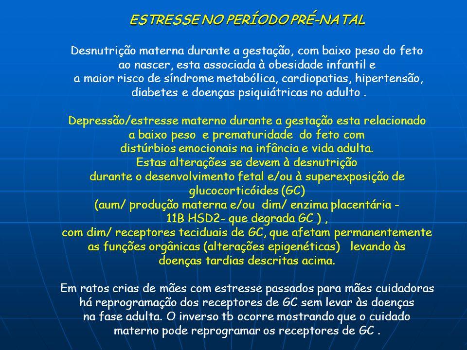 ESTRESSE NO PERÍODO PRÉ-NATAL
