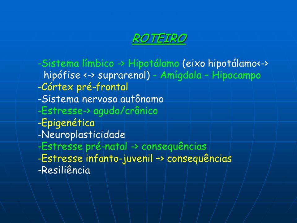 -Sistema límbico -> Hipotálamo (eixo hipotálamo<->