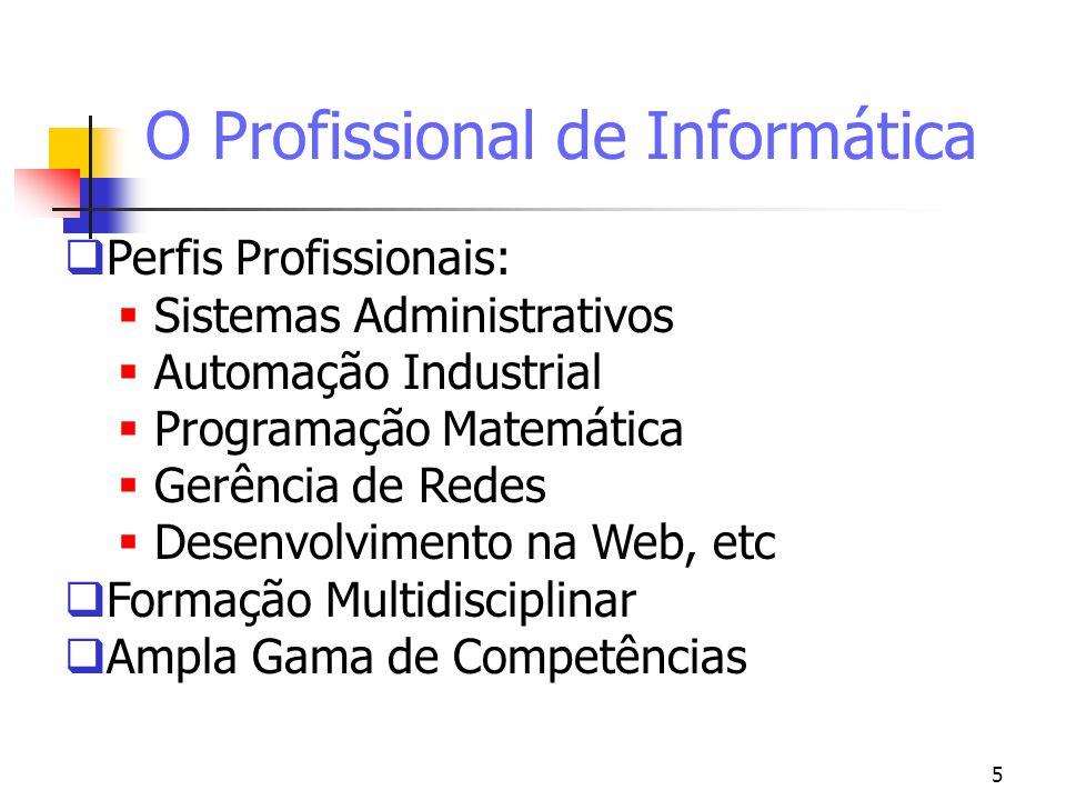 O Profissional de Informática