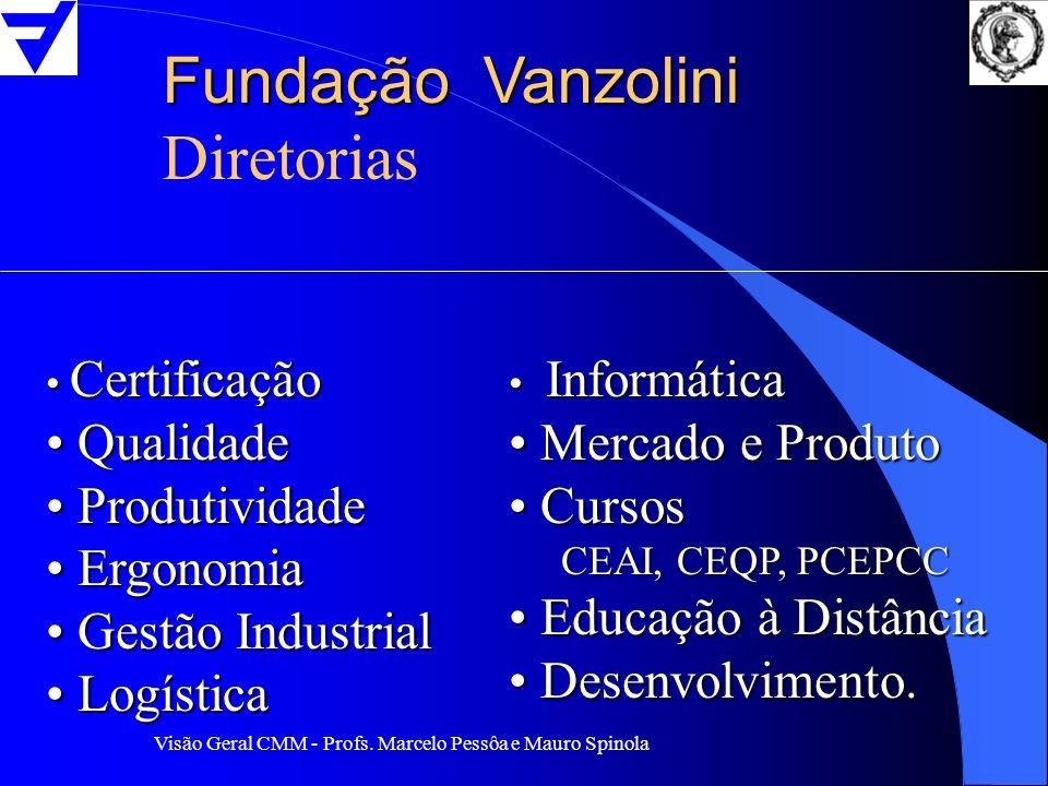 Fundação Vanzolini Diretorias Qualidade Produtividade Ergonomia