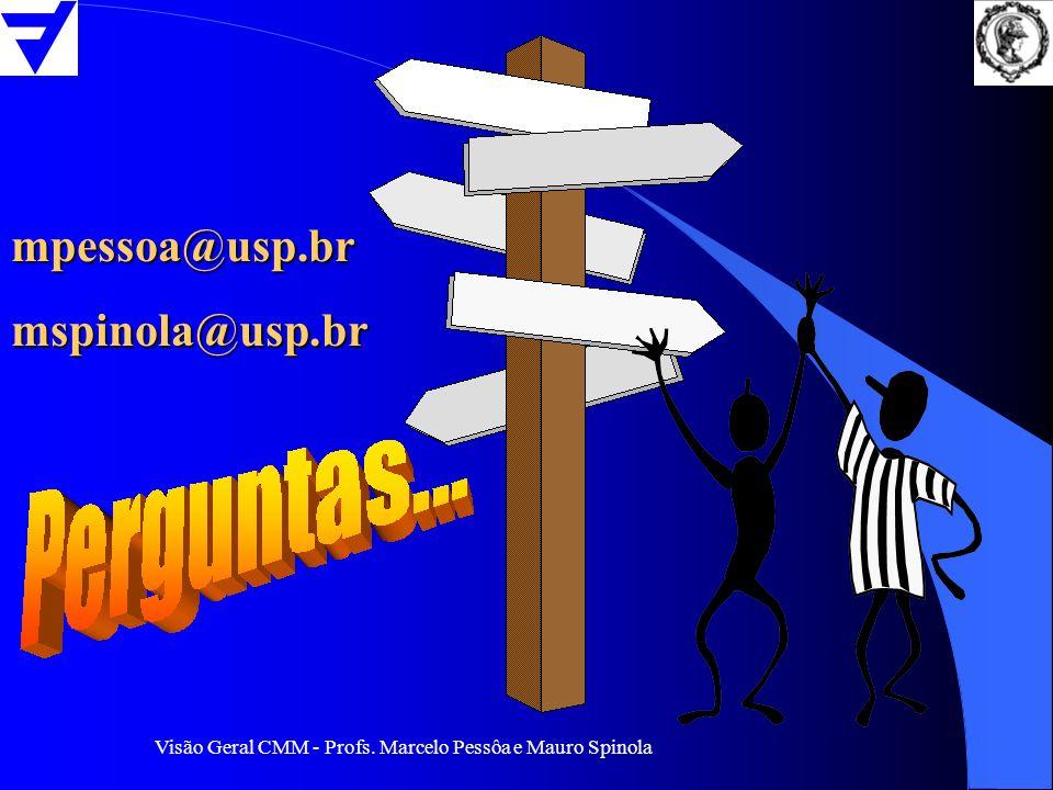 mpessoa@usp.br mspinola@usp.br