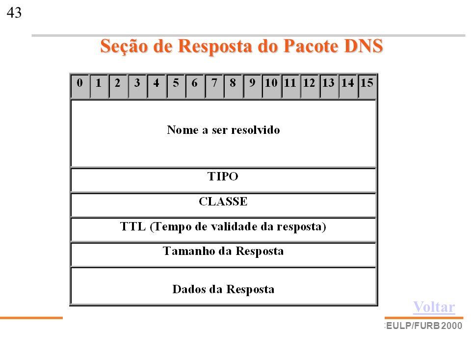 Seção de Resposta do Pacote DNS