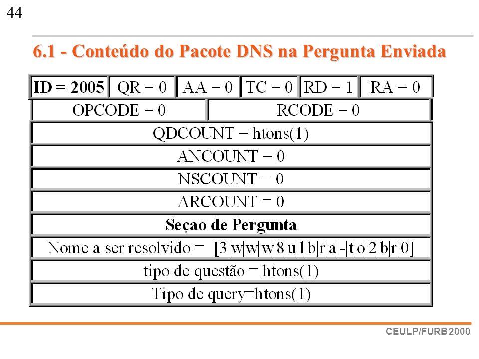6.1 - Conteúdo do Pacote DNS na Pergunta Enviada
