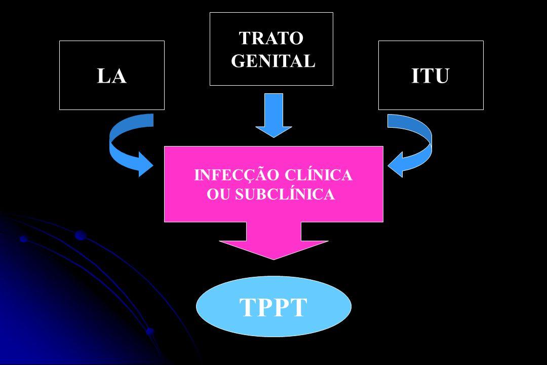 TPPT LA ITU TRATO GENITAL INFECÇÃO CLÍNICA OU SUBCLÍNICA Comprovação